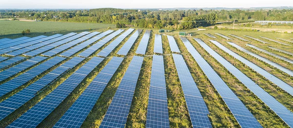 Solar Farm_3
